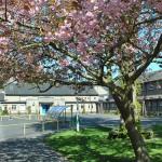 Innerleithen school aim to wind prize